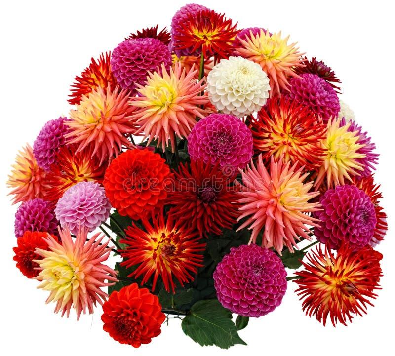 Agencement de fleur des chrysanthemums et des dahlias image stock