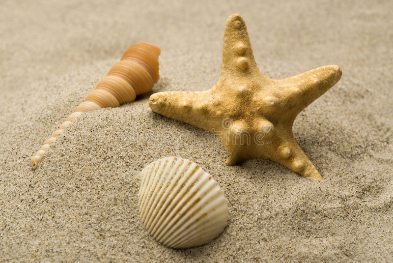 Agencement de plage images stock