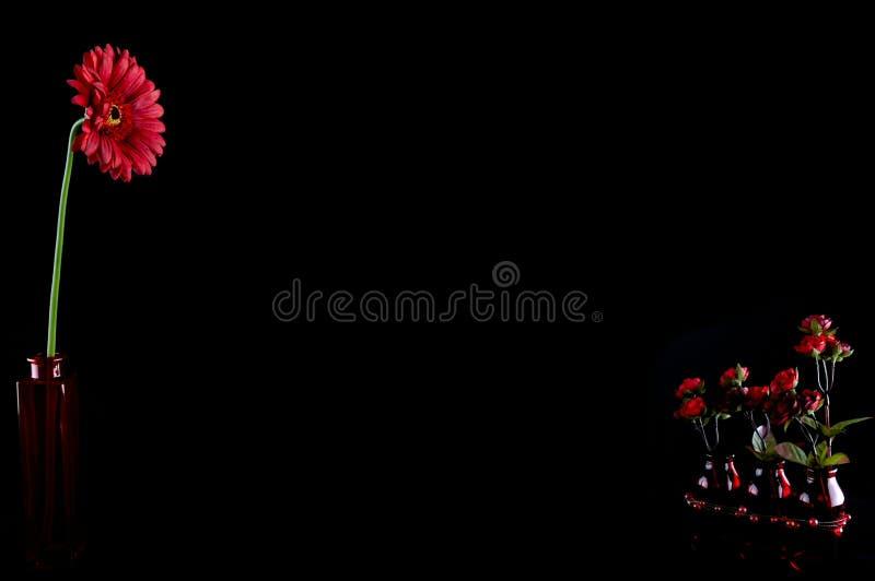 Agencement floral photos libres de droits
