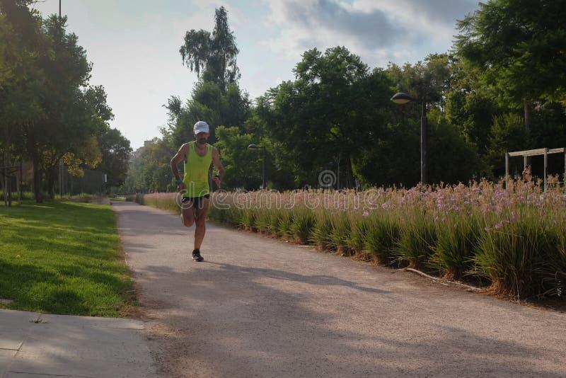 Agent op een hete de zomerdag in Turia-park, Valencia royalty-vrije stock afbeelding