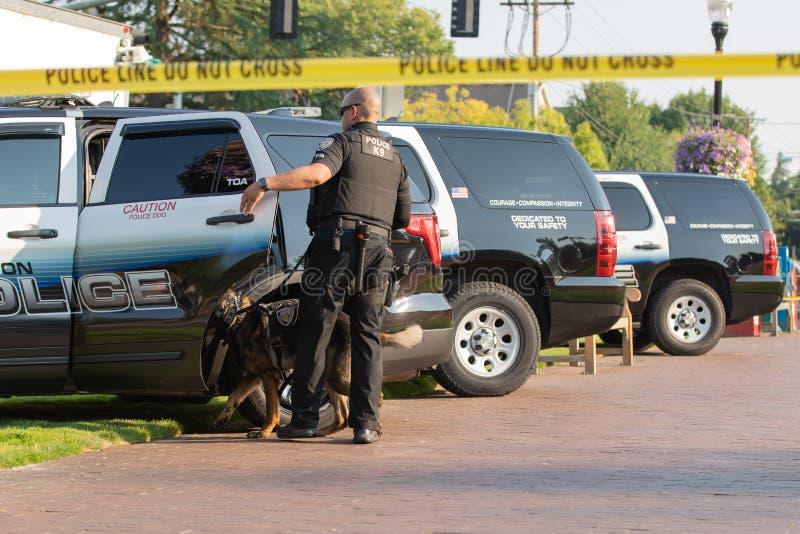 Agente da polícia ao lado da fileira dos carros fotos de stock