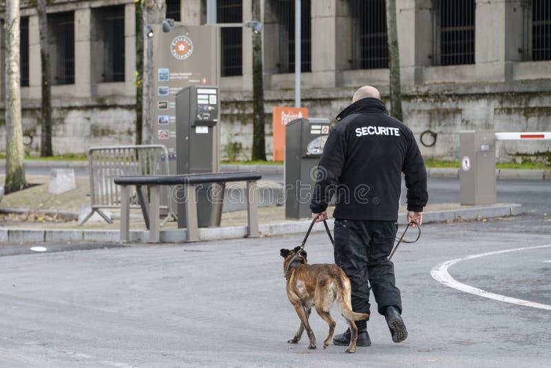 Agente de segurança com um cão fotografia de stock