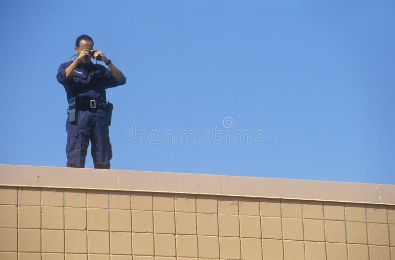 Agente de serviço secreto no telhado fotos de stock