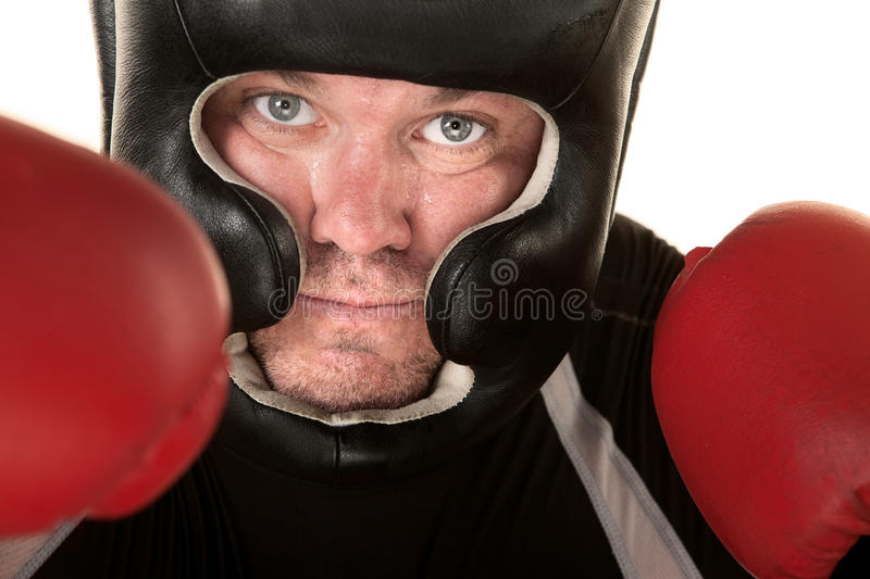 Download Aggressive Fighter Close Up Stock Photo - Image: 27518972