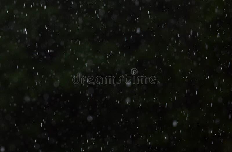 Aggressivt regn p? en m?rk l?vrik bakgrund fotografering för bildbyråer