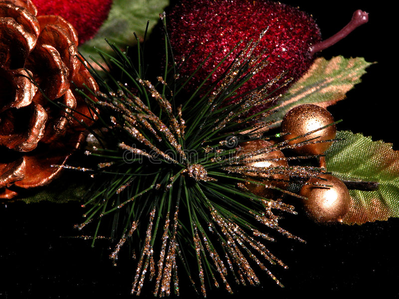 Aghi del pino verniciati oro immagine stock libera da diritti