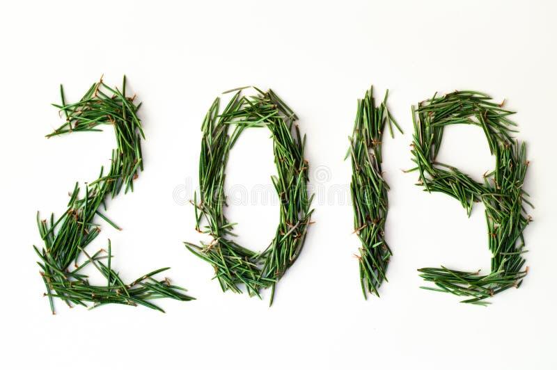 2019 Aghi dell'albero di Natale sui precedenti bianchi I numeri sono fatti dei rami di pino Concetto di nuovo anno immagine stock