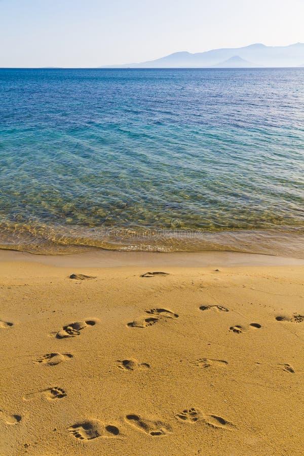 Agia安娜海滩,纳克索斯岛,基克拉泽斯,爱琴海,希腊 免版税库存照片
