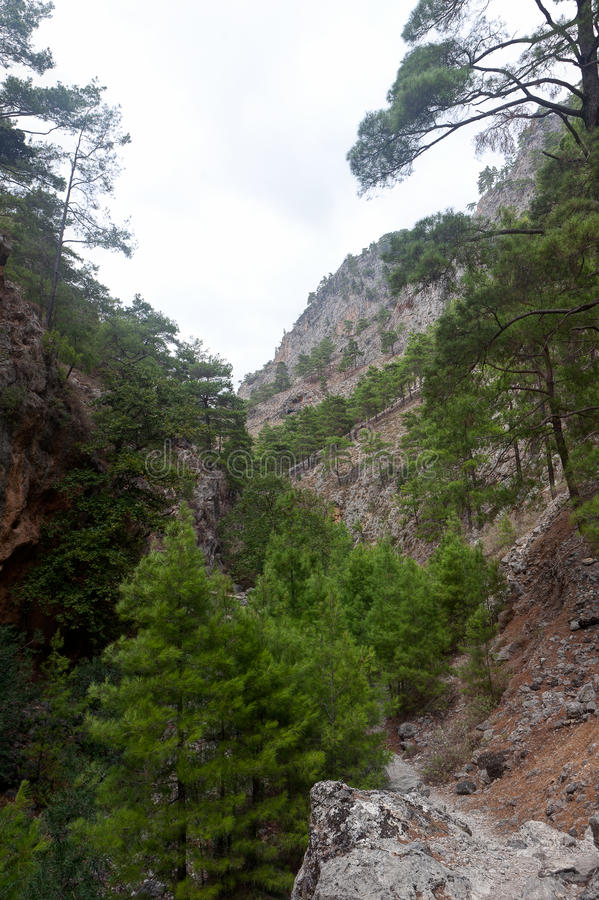 Agia Irini Gorge Canyon, Crete, Greece royalty free stock image