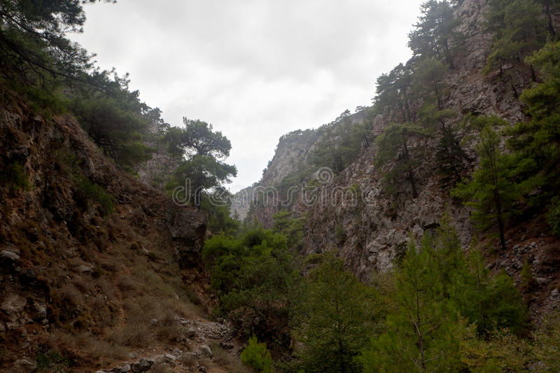 Agia Irini Gorge Canyon, Crete, Greece royalty free stock photography