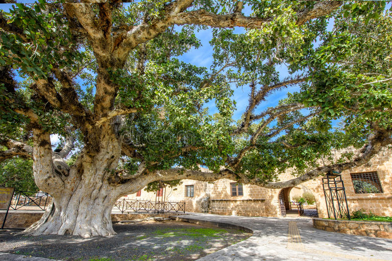 Agia Napa monastery courtyard entrance in Cyprus 3 stock images