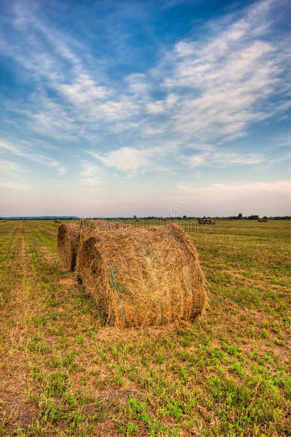 Download Agiculture Scene Nature Hay Stock Image - Image: 15990965
