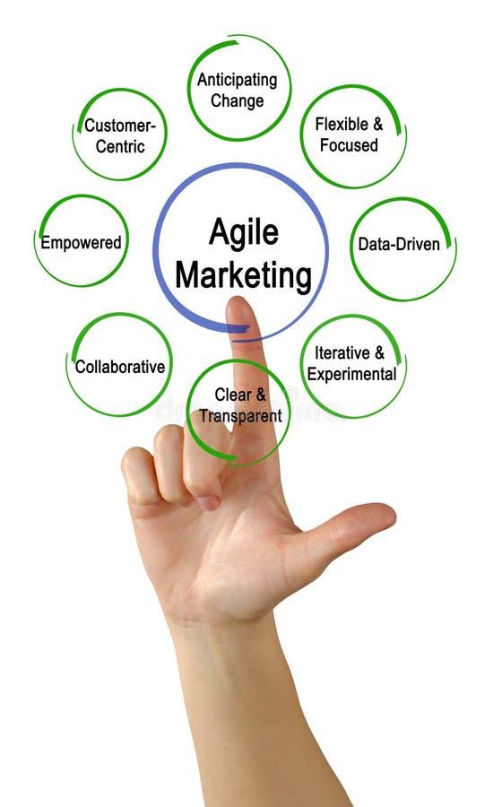 Agile Marketing Properties. Woman presenting Agile Marketing Properties stock images