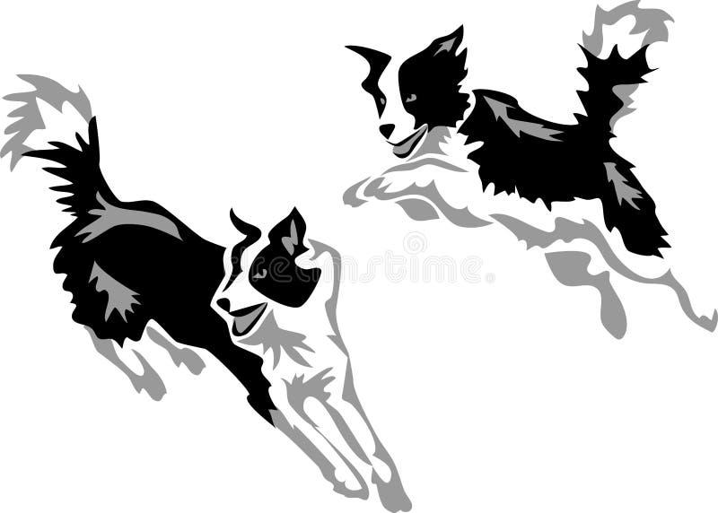 Agility. Border collie jumping - stylized greyscale illustration