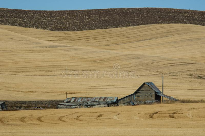 Abandoned Barn in Palouse Region of Eastern Washington. Aging, Abandoned barn in late summer in the Palouse region of Washington royalty free stock image