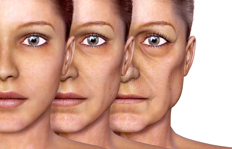 Aging of a woman, facial skin stock illustration