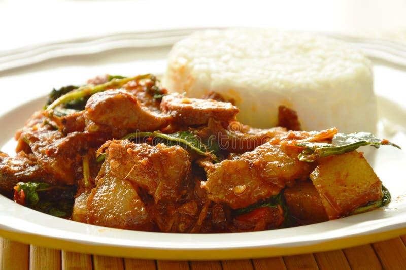 A agitação picante fritou o caril roasted da carne de porco com erva come pares com arroz no prato fotografia de stock royalty free