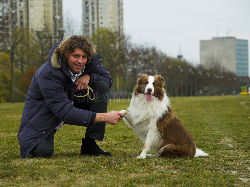 Agitazione delle mani con il cane fotografia stock
