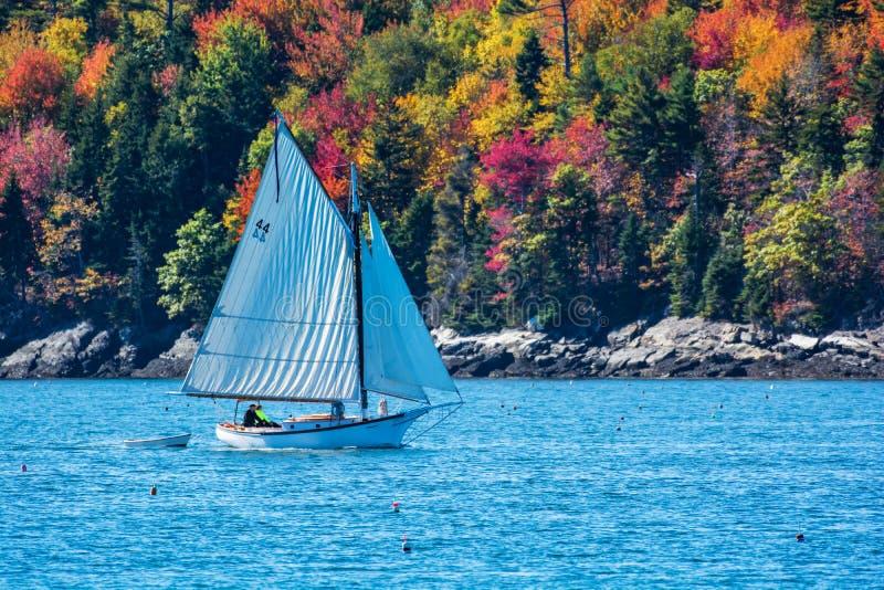 Żaglówka w jesieni w nabrzeżnym Maine, Nowa Anglia fotografia royalty free