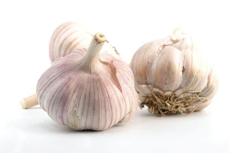 Download Aglio immagine stock. Immagine di verdura, alimenti, cucina - 222007