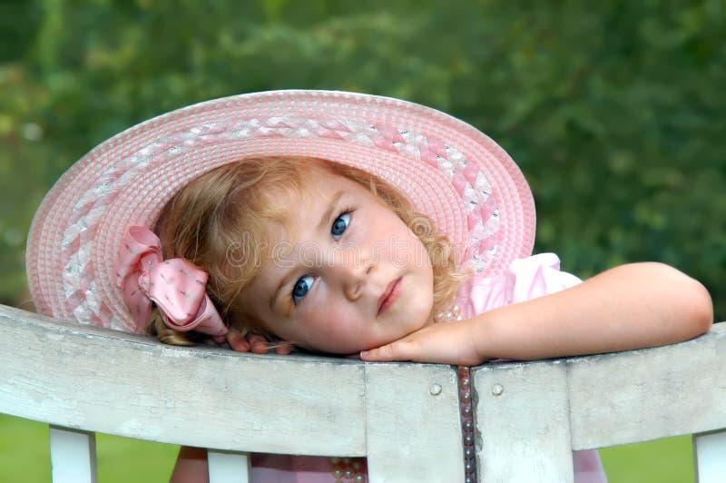 Aglow na cor-de-rosa imagens de stock