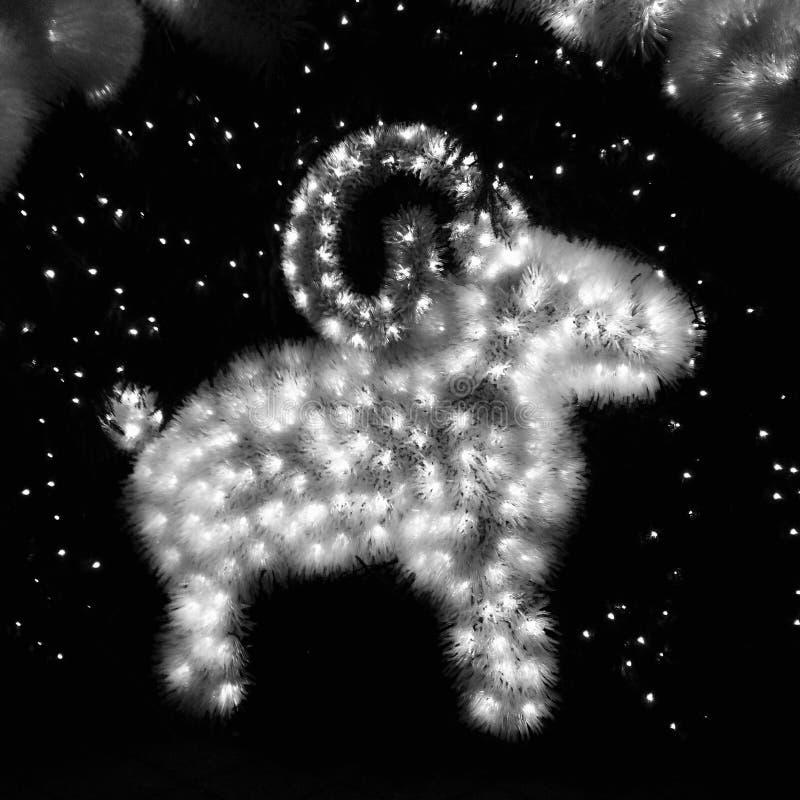 Agnello decorativo dalla lampadina fotografia stock