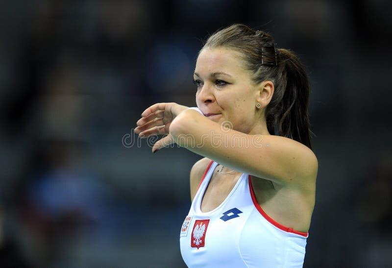 Agnieszka Radwanska photo stock