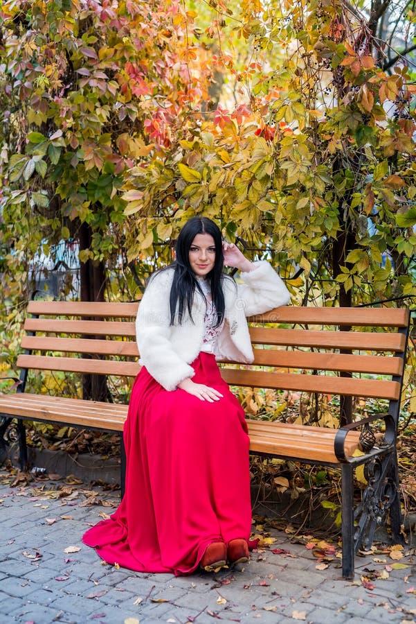 Agréable brune en robe rouge assise sur un banc dans le parc d'automne image stock