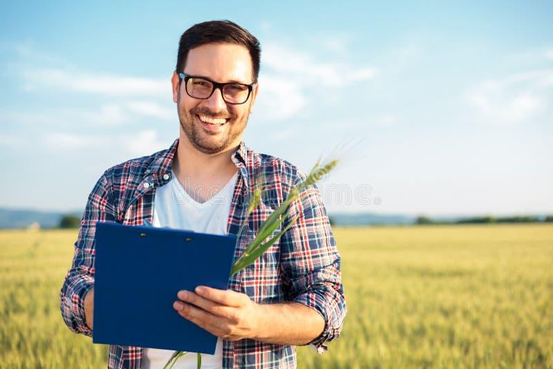 Agrônomo ou fazendeiro novo de sorriso que inspecionam o campo de trigo antes da colheita, redigindo dados a uma prancheta fotografia de stock royalty free