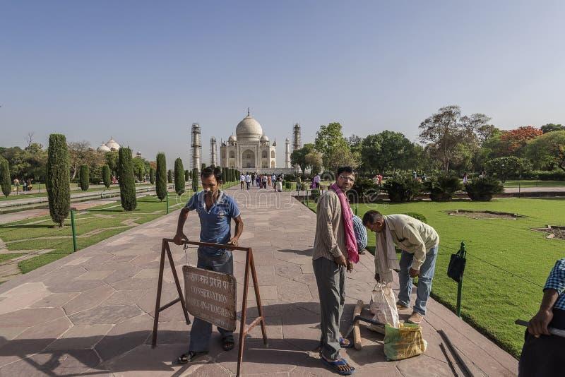 AGRA INDIEN 2016: Arbetare som får klara att starta reparationsarbete inom Taj Mahal, Agra, Indien royaltyfria bilder