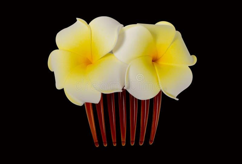 Agrafe florale de cheveux, barrette, broche photographie stock