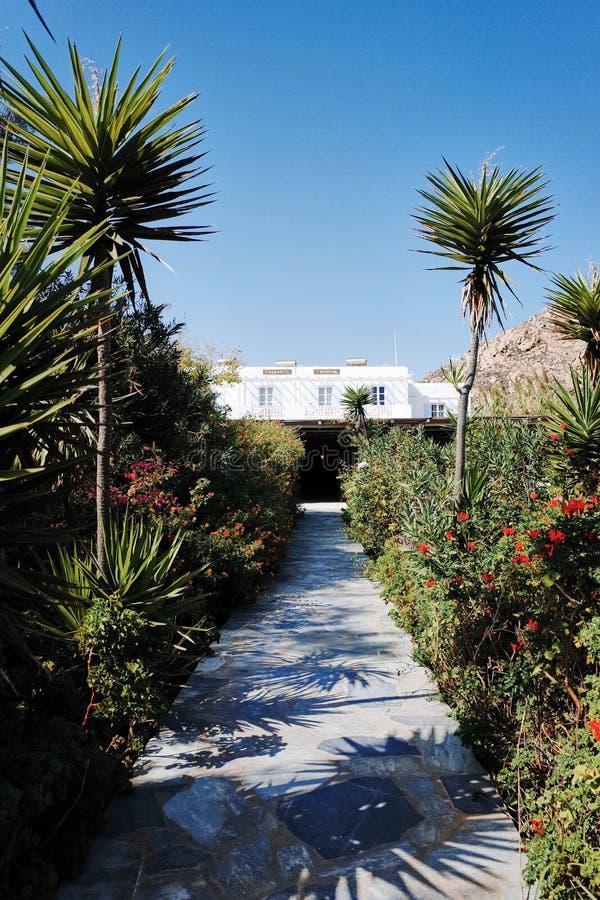 Agrari海滩的,米科诺斯岛海岛,希腊日出旅馆 库存图片
