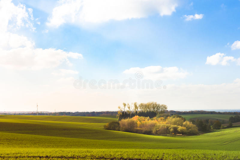 Agrarian fields in Autumn royalty free stock photos