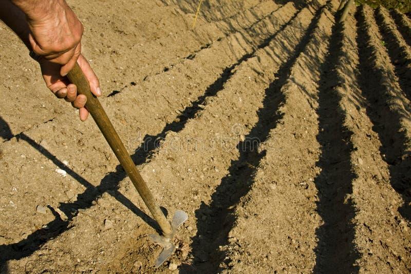 Agrarisch stock foto's