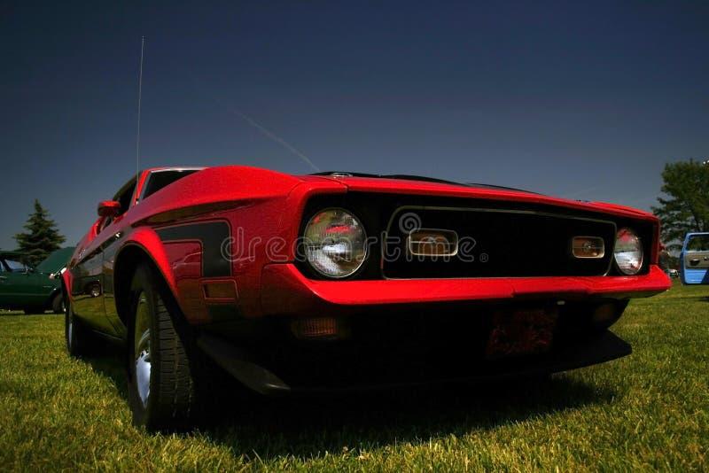 Agressieve Rode Mustang royalty-vrije stock afbeelding