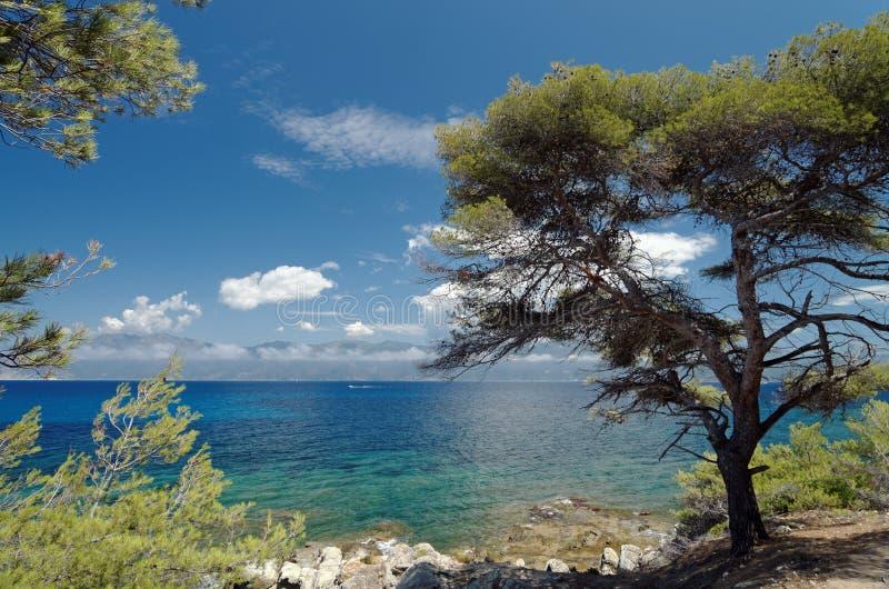 Agriatekust in Corsica royalty-vrije stock afbeelding