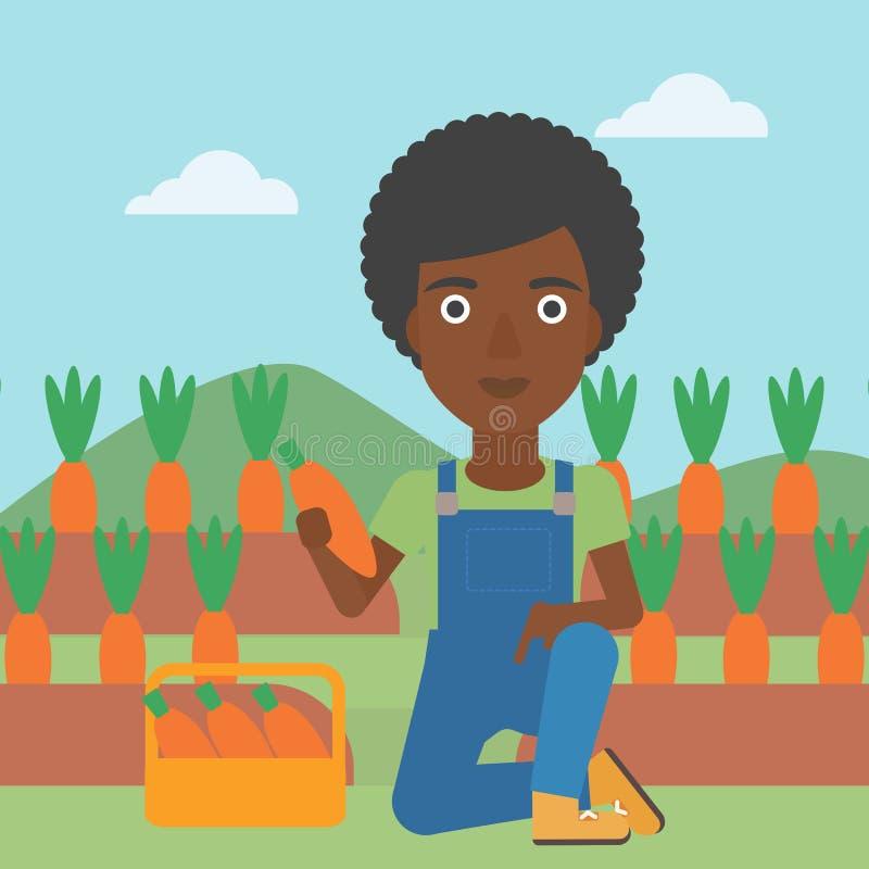 Agricoltore che raccoglie le carote royalty illustrazione gratis