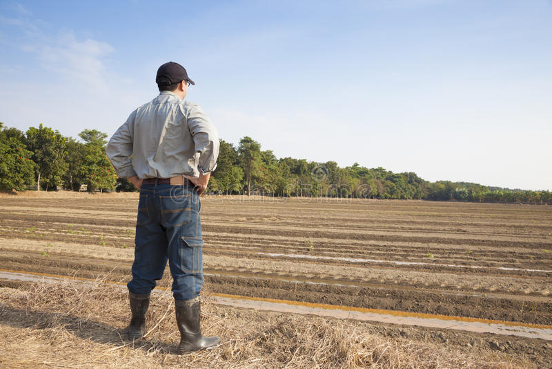 Agricoltore che sta sulla terra di azienda agricola immagini stock libere da diritti