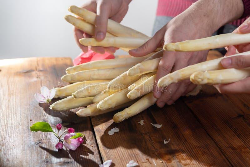 Agricoltore che tiene asparago bianco saporito fresco in mani, VE stagionale fotografia stock
