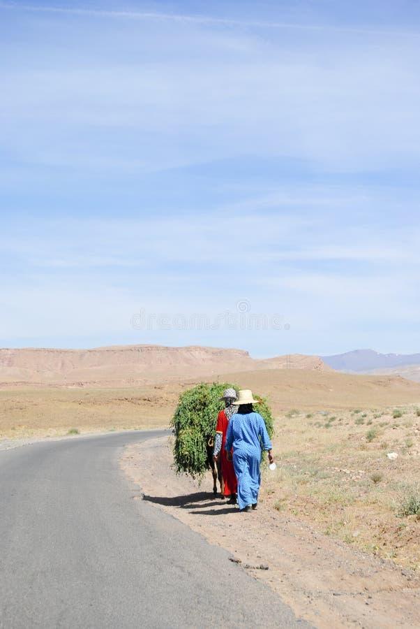 Agricoltore di Marrocan immagini stock libere da diritti