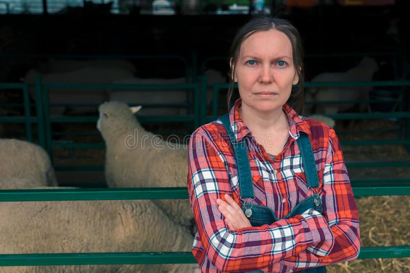 Agricoltore femminile sull'allevamento di pecore fotografia stock