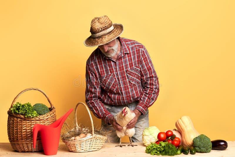 Agricoltore locale maturo, imballando il suo raccolto degli ortaggi freschi e delle uova di organis fotografia stock libera da diritti