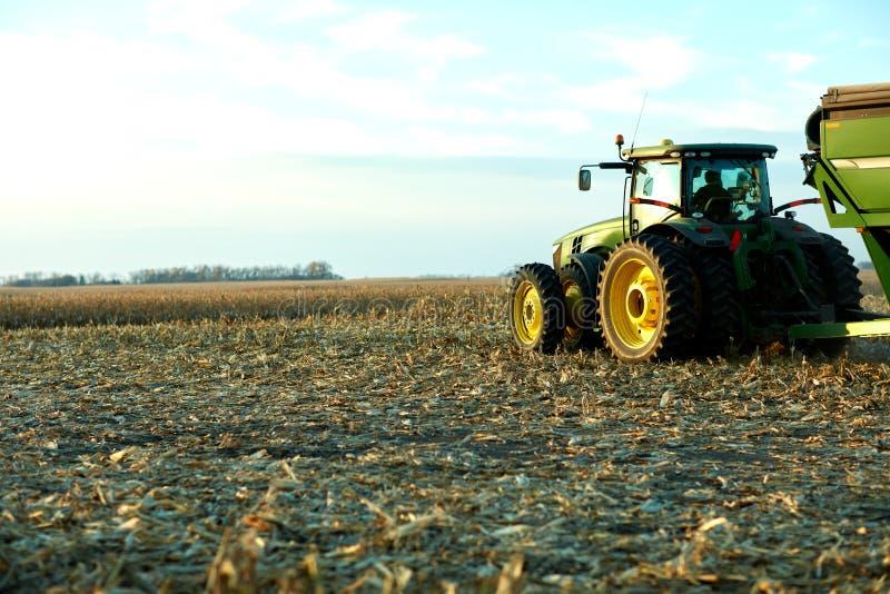 Agricoltore pronto a trasportare il raccolto effettuato del mais fotografia stock