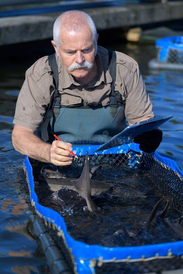 Agricoltore senior del pesce con la lavagna per appunti fotografia stock
