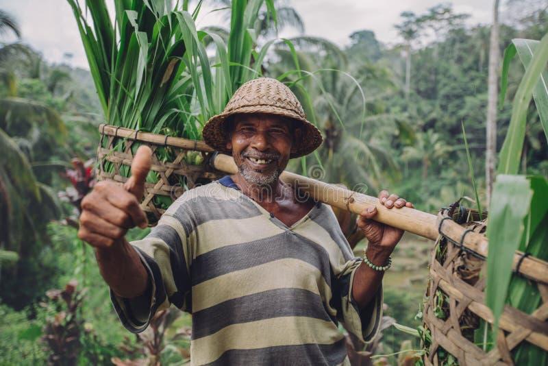 Agricoltore senior felice che dà i pollici su fotografia stock