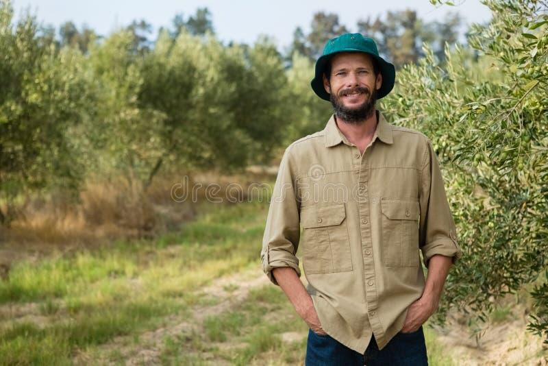 Agricoltore sorridente che sta con le mani in tasca in azienda agricola verde oliva fotografie stock libere da diritti