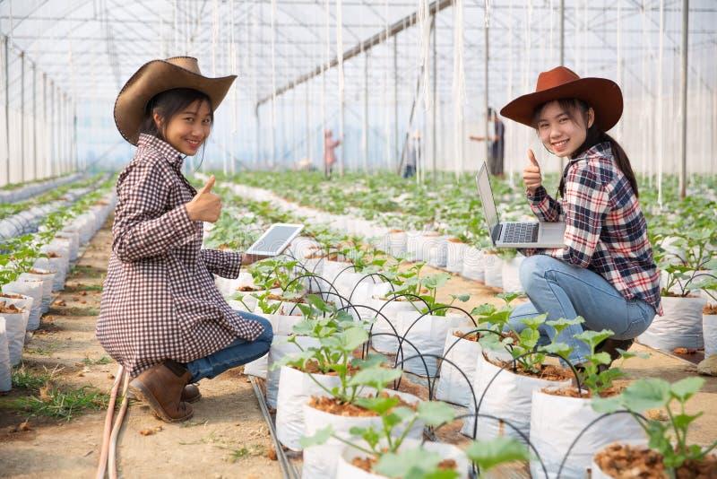 Agricoltore sorridente della giovane donna due asiatici felice immagini stock libere da diritti