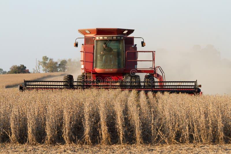 Agricoltore in una mietitrebbiatrice di caso fotografia stock libera da diritti