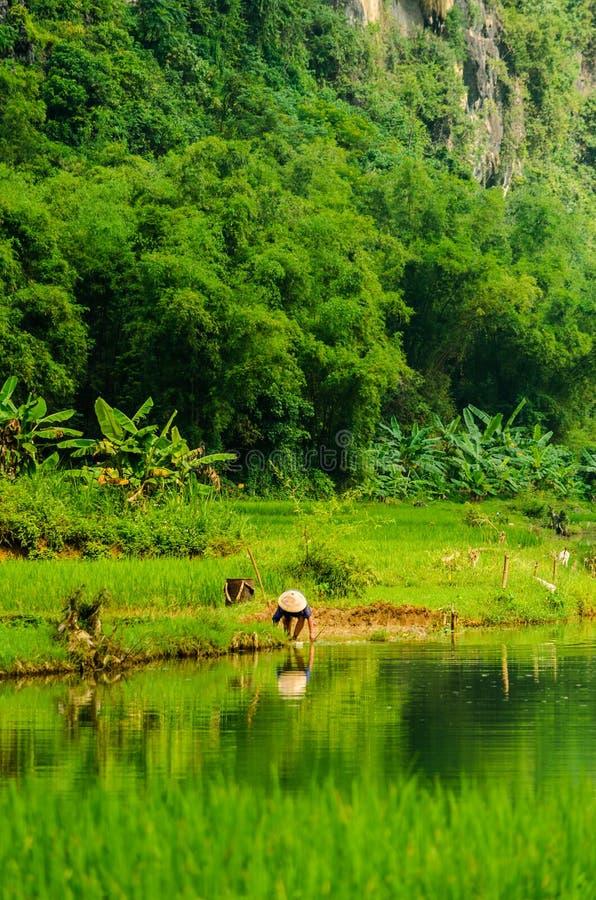 Agricoltore vietnamita che lava gli strumenti in fiume fotografia stock libera da diritti