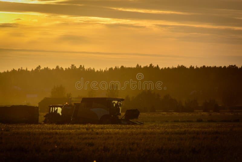 Agricoltori che lavorano ad un tramonto fotografia stock